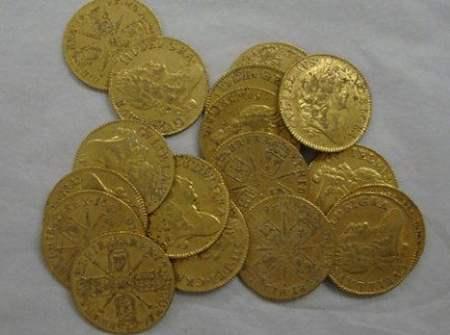 В Ирландии нашли клад из 81 золотой монеты