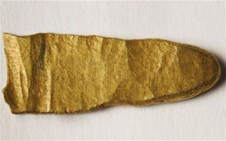 Археолог-любитель нашел золотой слиток викингов