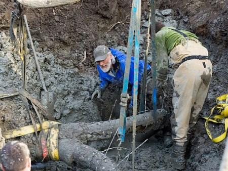 Древнего мамонта откопали про прокладке канализации