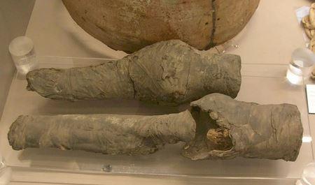 Найденные в Египте останки мумии оказались коленями царицы