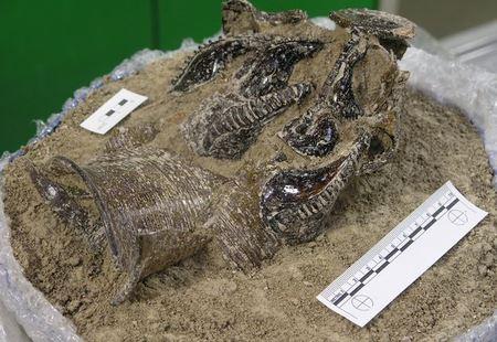 Редкие англо-саксонские артефакты были обнаружены во время раскопок в Кембридже