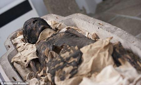 Египетская мумия, которую считали мертвой птицей, оказалась ребенком