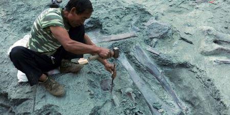 В Китае археологи обнаружили сенсационную находку