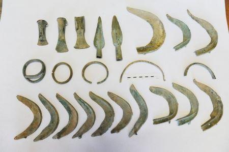 У Чехії собака віднайшов скарб бронзового століття